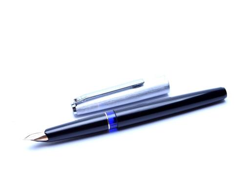 Pelikan Silvexa P20 Fountain Pen