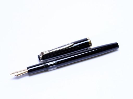 Reform Germany 4328 14K Gold Nib Piston Fountain Pen