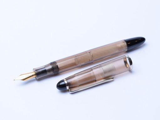 SENATOR Transparent Demonstrator Fountain Pen