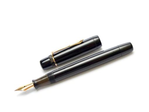 1930s Dutch UNION GENIE 19500 Push Button Bladder Fountain Pen